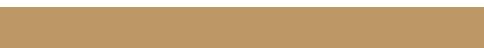 FIJI PEARLS Mobile Retina Logo
